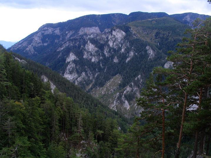 Foto 1 zur Tour: Klettersteig Turmstein Ostkante (1416m)