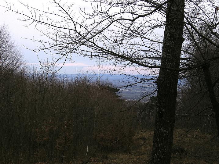 Foto 2 zur Tour: Aus dem Helenental auf den Badner Lindkogel (582m)