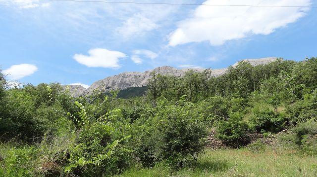 Foto 1 zur Tour: Rundtour auf der Insel Krk zum Obzova (569m) und Zminja (537m) sowie Lipica