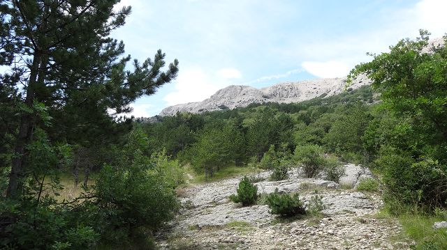 Foto 4 zur Tour: Rundtour auf der Insel Krk zum Obzova (569m) und Zminja (537m) sowie Lipica