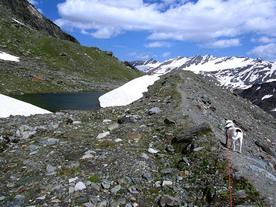 Foto 4 zur Tour: Hochtourenfeeling auf der Butzenspitze (3300m)