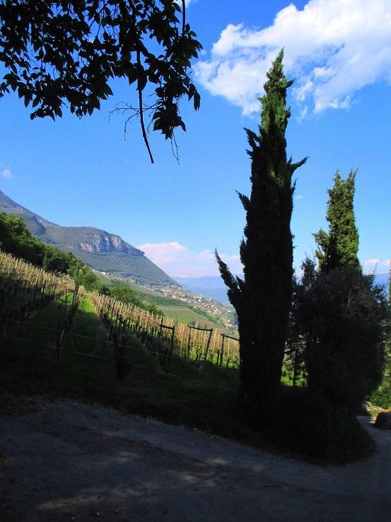 Foto 3 zur Tour: Klettersteig Fennberg (1125m)