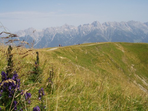 Foto: hofchri / Mountainbike Tour / Hundstein-Runde / wahnsinns Panorama auf 2100 m / 07.07.2009 19:35:23