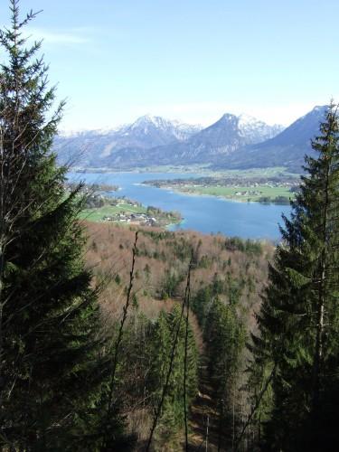 Foto: hofchri / Mountainbike Tour / Rund um den Schafberg - über den Falkenstein / Aussicht vom Falkenstein / 06.07.2009 19:55:28