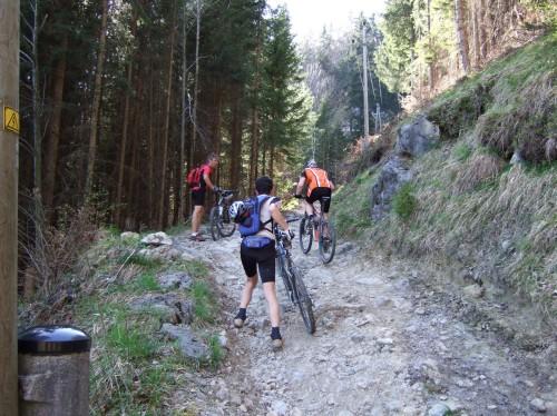 Foto: hofchri / Mountainbike Tour / Rund um den Schafberg - über den Falkenstein / 2007 war der Anstieg zum Falkenstein noch schwieriger - nun ist sie ausgebaut, aber trotzdem extrem steil! / 06.07.2009 19:57:12