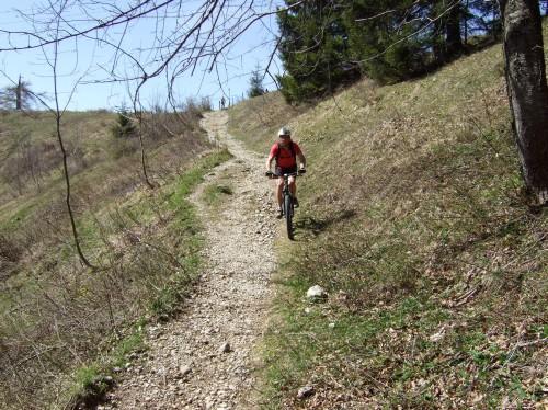Foto: hofchri / Mountainbike Tour / Rund um den Schafberg - über den Falkenstein / downhill von der Eisenaueralm / 06.07.2009 19:51:53