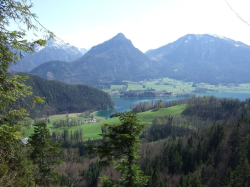Foto: hofchri / Mountainbike Tour / Rund um den Schafberg - über den Falkenstein / am Weg zum Falkenstein / 06.07.2009 19:54:14