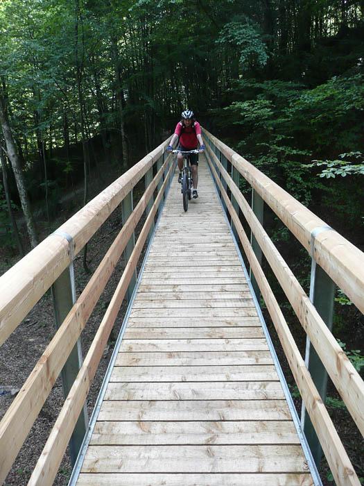 Foto: Lenswork.at / Ch. Streili / Mountainbike Tour / Über die Salinenwege auf die Kaitlalm / Neuer Steg beim Salinenweg kurz vor dem Thumsee / 30.05.2008 09:59:20