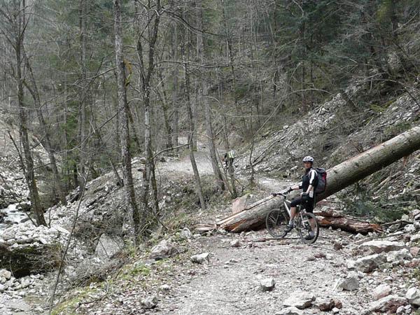Foto: Lenswork.at / Ch. Streili / Mountainbike Tour / Rund um den Gaisberg / Nach dem Sturm in der Glasenbachklamm / 13.04.2008 20:32:34