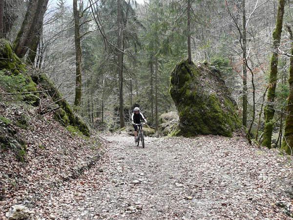 Foto: Lenswork.at / Ch. Streili / Mountainbike Tour / Rund um den Gaisberg / in der Glasenbachklamm / 13.04.2008 20:30:45