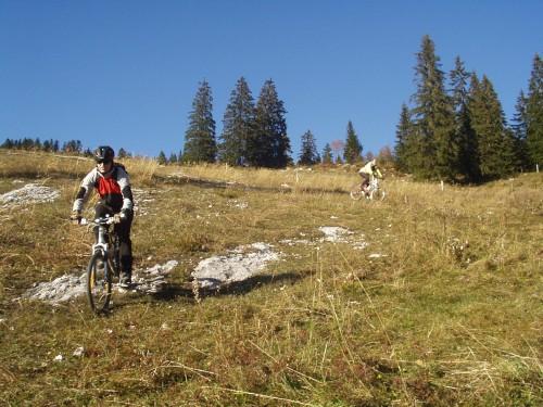 Foto: hofchri / Mountainbike Tour / Rund um den Schlenken / Downhill von der Latschenalm - Abkürzung über die Schipiste / 07.07.2009 18:44:02