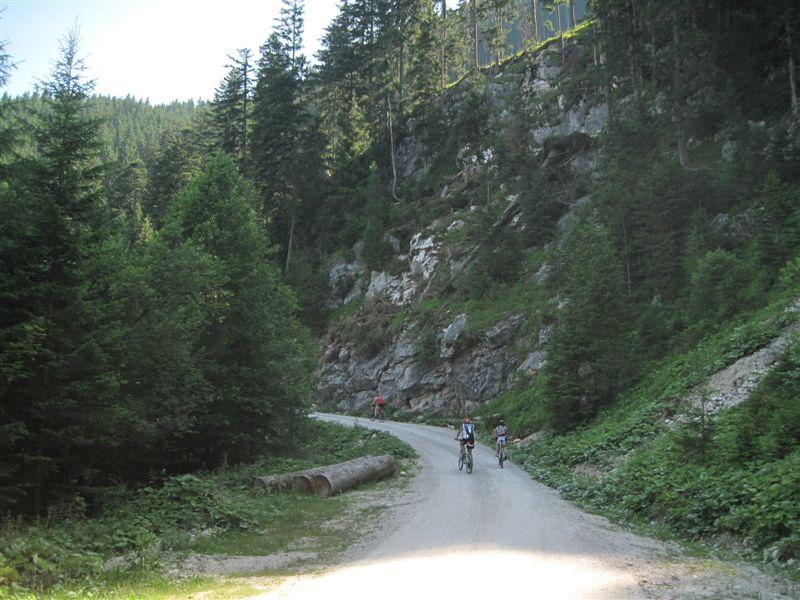 Foto: Heidi Schützinger / Mountainbike Tour / Von Gosau-Hinterthal auf die Roßalm / Ideale Tour für heiße Tage! / 05.07.2015 16:56:45