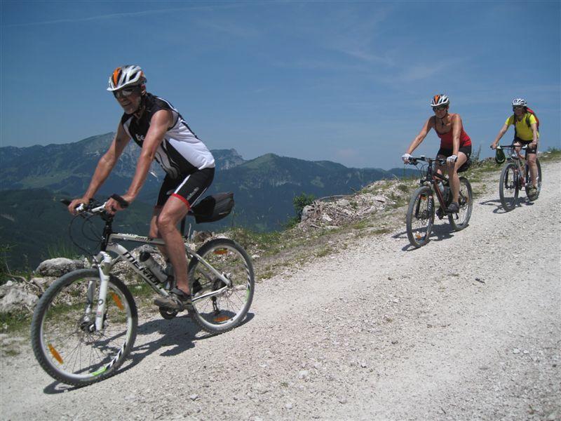 Foto: Heidi Schützinger / Mountainbike Tour / Von Gosau-Hinterthal auf die Roßalm / Während der Abfahrt zum Gosausee / 05.07.2015 16:54:56