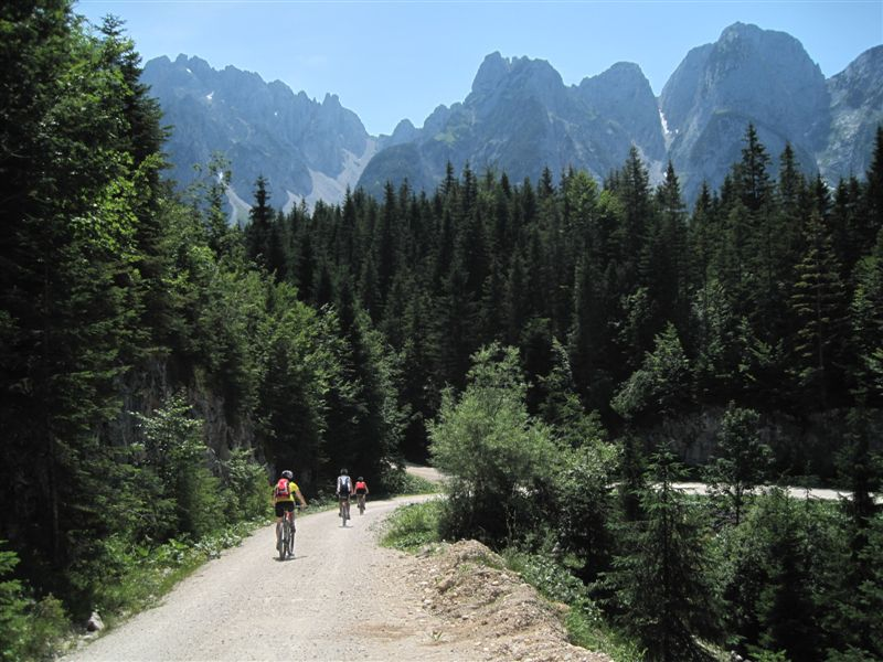 Foto: Heidi Schützinger / Mountainbiketour / Von Gosau-Hinterthal auf die Roßalm / Abfahrt von Ebenalm zum Gosausee / 05.07.2015 16:53:17
