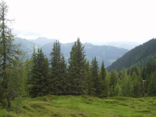 Foto: hofchri / Mountainbiketour / Flachau - Frauenalm - Griessenkar / 06.07.2009 19:40:00