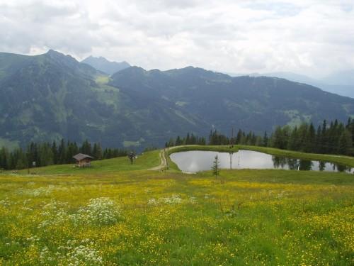 Foto: hofchri / Mountainbiketour / Flachau - Frauenalm - Griessenkar / 06.07.2009 19:40:06