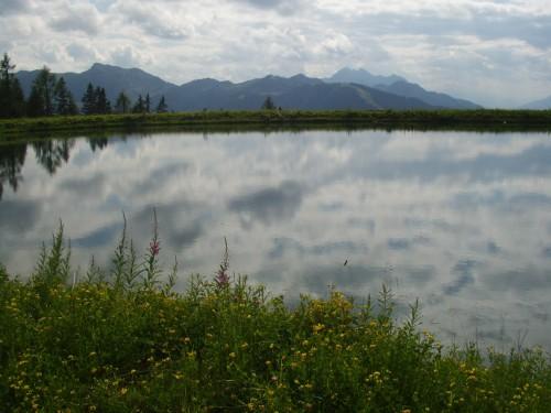 Foto: hofchri / Mountainbiketour / Flachau - Frauenalm - Griessenkar / 06.07.2009 19:40:29