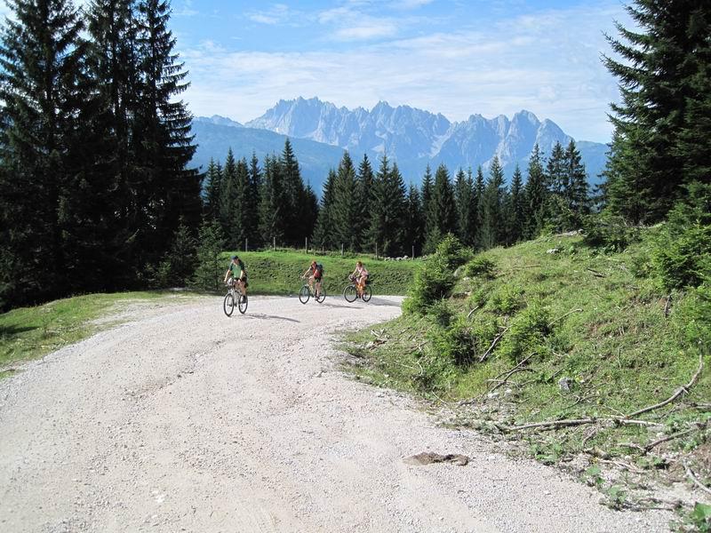 Foto: Heidi Schützinger / Mountainbike Tour / Iglmoosrunde / Während der Auffahrt hat man immer einen wunderbaren Blick auf den Gosaukamm. / 08.08.2010 16:21:26