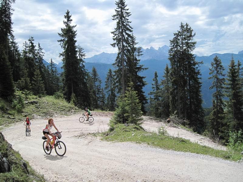Foto: Heidi Schützinger / Mountainbike Tour / Iglmoosrunde / Auffahrt Richtung Goiserer Hütte / 08.08.2010 16:22:13