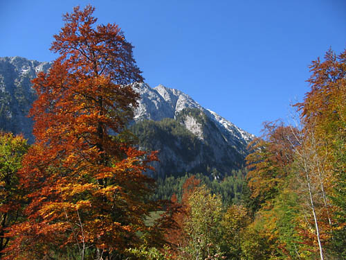 Foto: Lenswork.at / Ch. Streili / Mountainbiketour / Jochalm-Route (Lammertal.info) / 26.09.2007 15:31:59
