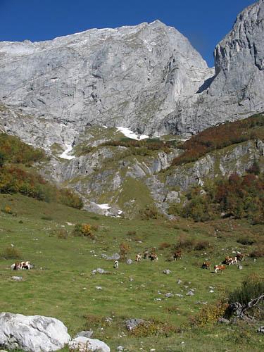 Foto: Lenswork.at / Ch. Streili / Mountainbiketour / Jochalm-Route (Lammertal.info) / 26.09.2007 15:31:41