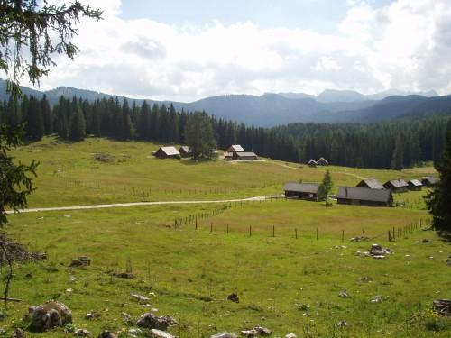 Foto: hofchri / Mountainbiketour / Viehberg Alm - Runde / auf der idyllischen Alm (bewirtschaftet) / 06.07.2009 19:19:53