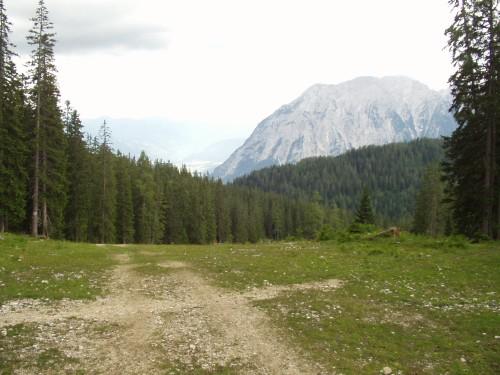 Foto: hofchri / Mountainbike Tour / Tauplitzalm - Downhillstrecke / Beginn der Downhillstrecke - keine Zeit für weitere Fotos! / 06.07.2009 19:27:48