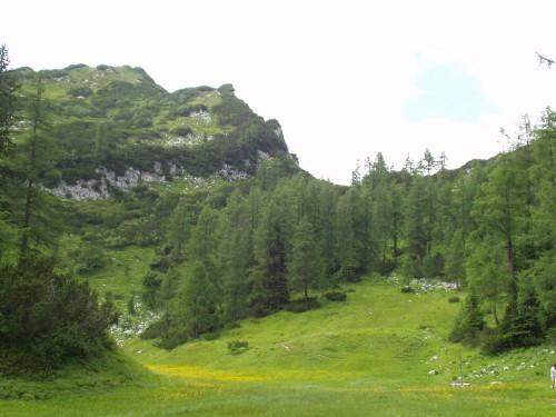 Foto: hofchri / Mountainbike Tour / Tauplitzalm - Downhillstrecke / 06.07.2009 19:25:36