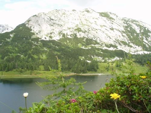 Foto: hofchri / Mountainbike Tour / Tauplitzalm - Downhillstrecke / Großsee auf der Tauplitzalm / 06.07.2009 19:26:14