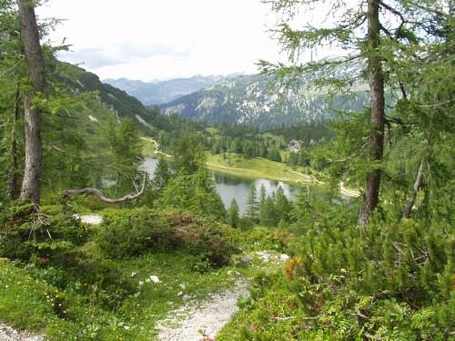 Foto: hofchri / Mountainbike Tour / Tauplitzalm - Downhillstrecke / 06.07.2009 19:26:57