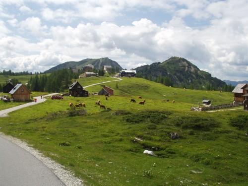 Foto: hofchri / Mountainbike Tour / Tauplitzalm - Downhillstrecke / 06.07.2009 19:27:19