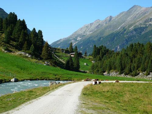 Foto: Radlfahrer / Mountainbike Tour / Krimmler Achental / 14.06.2010 15:02:58