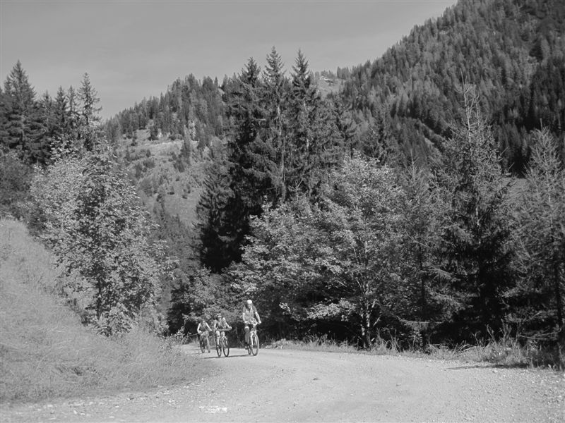 Foto: Heidi Schützinger / Mountainbiketour / Almrunde am Ladenberg / Schöner warmer  leuchtender Herbsttag in anderer Perspektive  / 20.09.2014 15:51:10