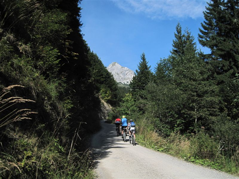 Foto: Heidi Schützinger / Mountainbike Tour / Almrunde am Ladenberg / während der Auffahrt zum Prokschhaus / 20.09.2014 15:49:17