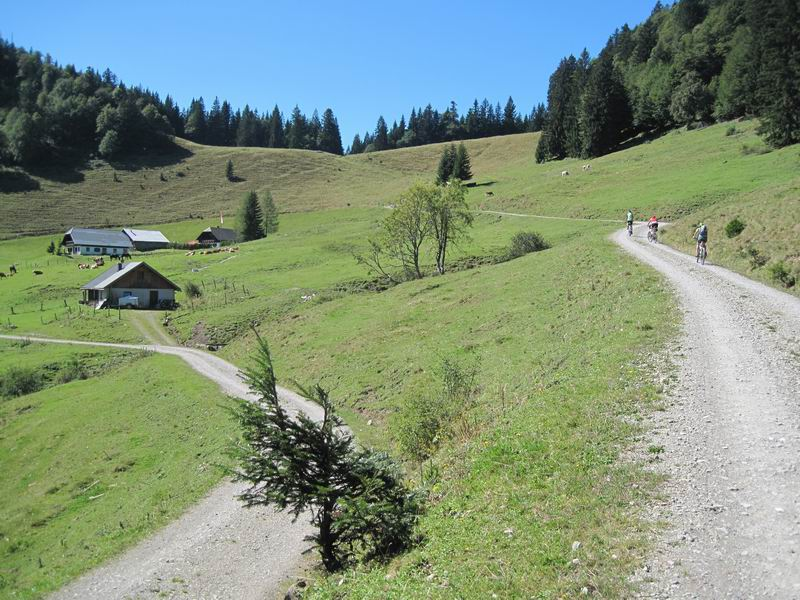 Foto: Heidi Schützinger / Mountainbiketour / Almtour zwischen Gaißau und Hintersee / Gleich haben wir die Ladenbergalm erreicht / 10.09.2011 18:18:59