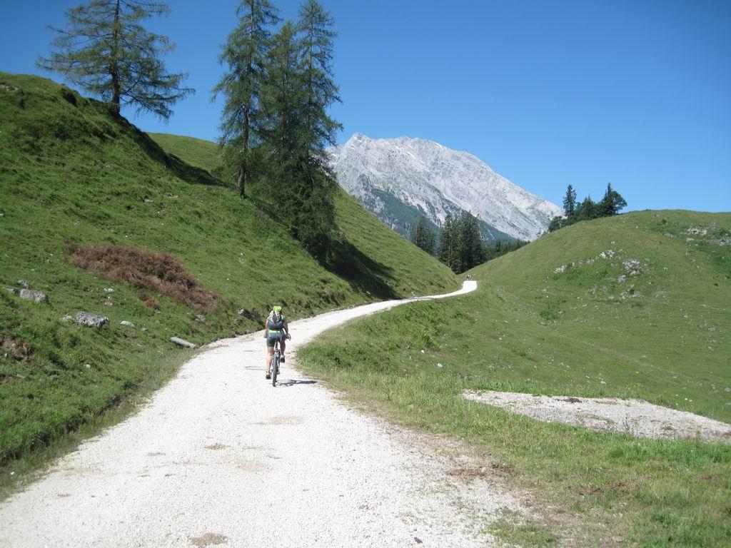 Foto: Heidi Schützinger / Mountainbike Tour / Echo / Während der Auffahrt - kurz nach der Königsbachalm. / 10.07.2011 17:59:04