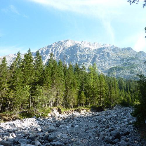 Foto: 518205 / Mountainbike Tour / Falleck/Hirschbichl-Runde / Sicht aufs Kammerlinghorn von der Kaltwasserstube aus / 31.08.2011 16:34:12