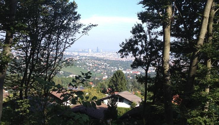 Foto: Martin Reingruber / Mountainbiketour / Schottenhof Strecke (2 Varianten) / Am Weg von der Kreuzeichenwiese zum Hanselteich hat man einen Blick auf die Stadt - etwas versperrt durch die Bäume ... / 18.09.2012 17:27:44