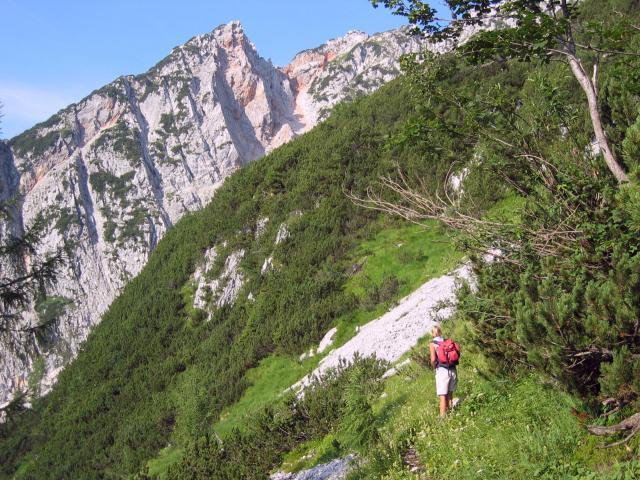 Foto: pepi4813 / Wandertour / Plassen von Hallstatt / Aufstieg zum Plassen / 18.07.2009 18:40:47