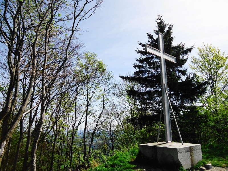 Foto: Günter Siegl / Wander Tour / Vorderfager  - Rauchenbichlalm - Gaisberg / 15.05.2015 15:01:35