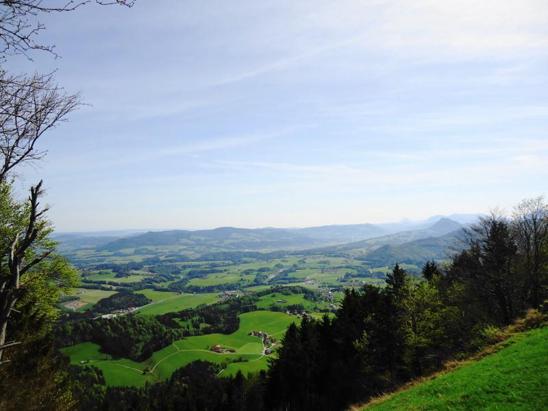 Foto: Günter Siegl / Wander Tour / Vorderfager  - Rauchenbichlalm - Gaisberg / Kolomansberg mittig / 15.05.2015 15:00:59
