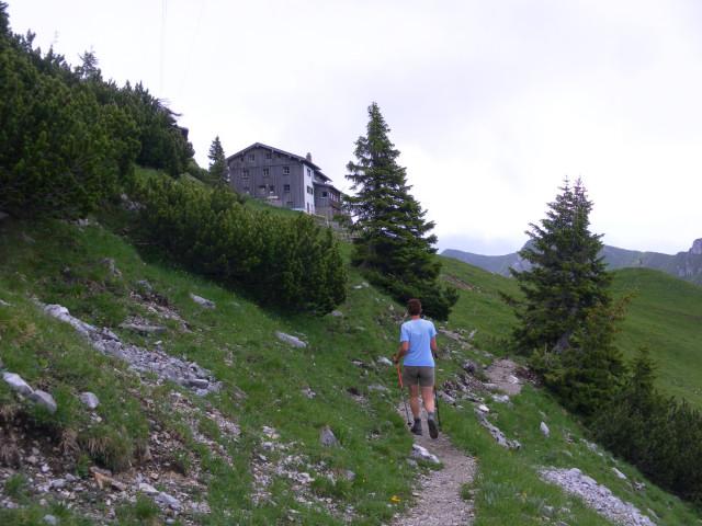 Foto: Wolfgang Lauschensky / Wander Tour / Aus dem Rißbachtal auf den Schafreuter (Scharfreiter) / Tölzer Hütte / 24.06.2012 20:24:53