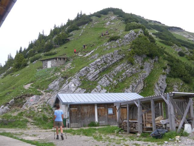 Foto: Wolfgang Lauschensky / Wander Tour / Aus dem Rißbachtal auf den Schafreuter (Scharfreiter) / Start des Südgratanstiegs bei der Hütte / 24.06.2012 20:24:30