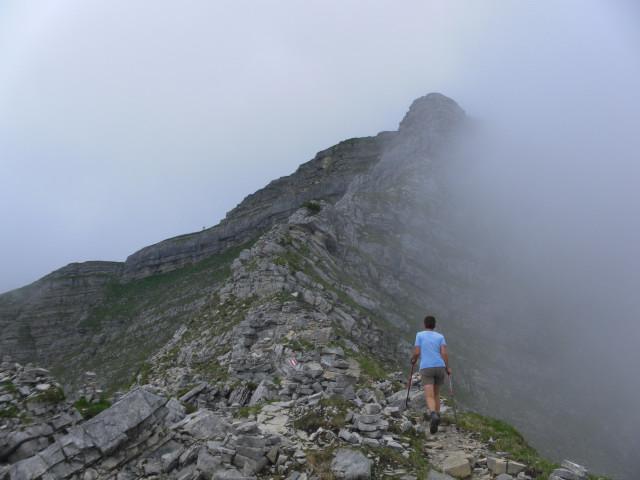 Foto: Wolfgang Lauschensky / Wander Tour / Aus dem Rißbachtal auf den Schafreuter (Scharfreiter) / Felsbänder über der Latschenzone / 24.06.2012 20:24:15