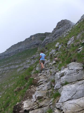 Foto: Wolfgang Lauschensky / Wander Tour / Aus dem Rißbachtal auf den Schafreuter (Scharfreiter) / Querung am Südgrat zum Gipfelaufsatz / 24.06.2012 20:24:05