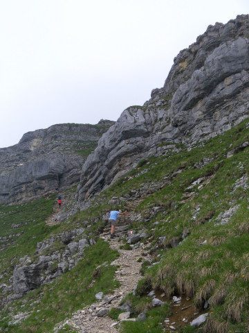 Foto: Wolfgang Lauschensky / Wander Tour / Aus dem Rißbachtal auf den Schafreuter (Scharfreiter) / am Gipfelstock / 24.06.2012 20:23:55