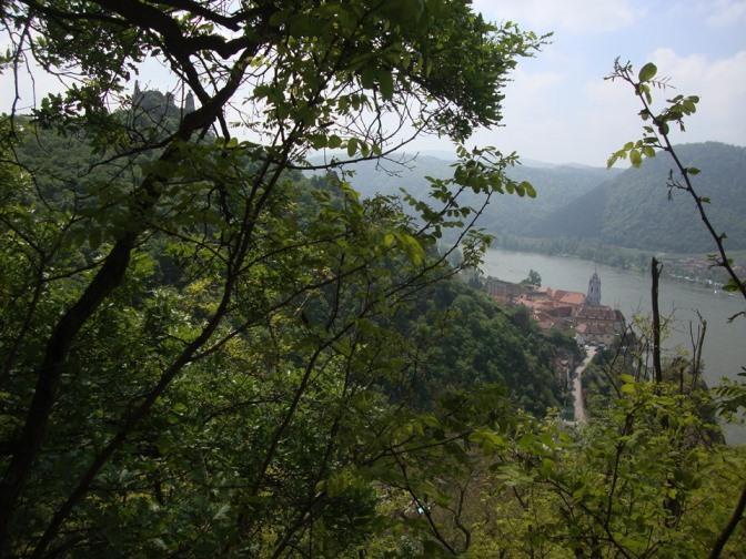 Foto: Wolfgang Dröthandl / Wander Tour / Vogelberg-Schloßberg - Runde / Erster Blick auf Ruine und Ort Dürnstein vom Aufstieg Richtung Vogelberg / 08.05.2017 09:43:52