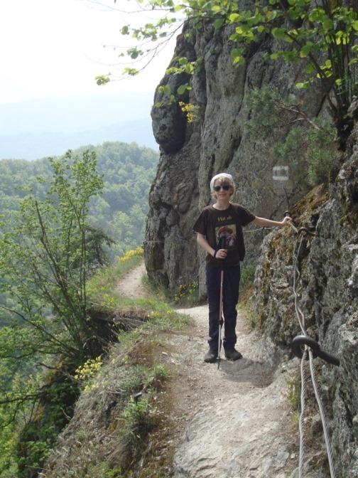 Foto: Wolfgang Dröthandl / Wander Tour / Vogelberg-Schloßberg - Runde / Vogelbergsteig - 'Schlüsselstelle': schmales 'Fenstersims', aber gut gesichert / 08.05.2017 09:42:26