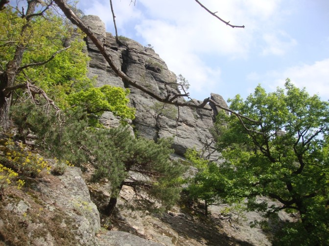 Foto: Wolfgang Dröthandl / Wander Tour / Vogelberg-Schloßberg - Runde / 08.05.2017 09:37:22