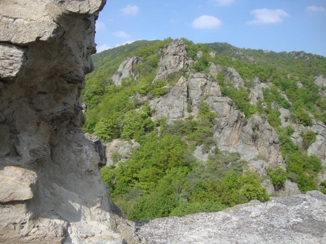Foto: Wolfgang Dröthandl / Wander Tour / Vogelberg-Schloßberg - Runde / Klettergarten bei der Ruine Dürnstein / 08.05.2017 09:36:10